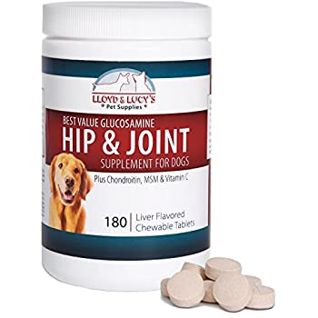 Best Glucosamine Chondroitin Supplement For Dogs
