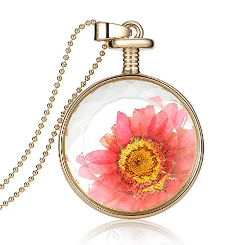 Dry Red Flower Herbarium In Transparent Round Box Memory Locket Necklace For (Galadriel Costume For Sale)