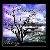 Gloomy Sunday by Electroflesh