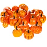 Factory Direct Craft Mini Decorative Fall Pumpkins and Gourds - Pkg of 24