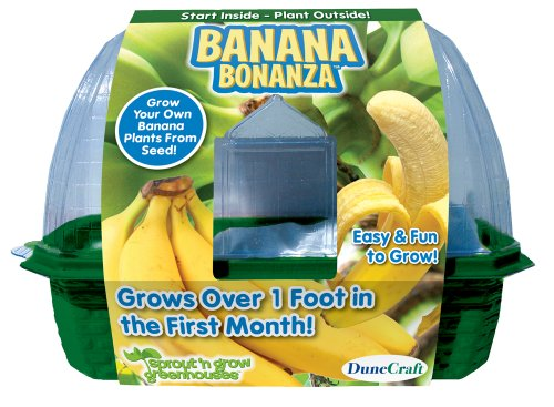 DuneCraft Sprout 'n Grow Greenhouses Banana by DuneCraft (Image #1)