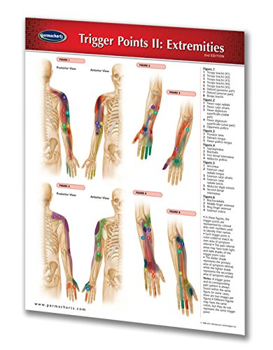 Trigger Points II: Extremities - Reflexology Quick Reference Guide by Permacharts
