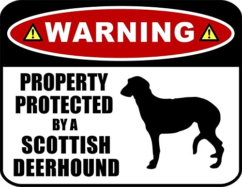 (PCSCP Warning Property Protected by a Scottish Deerhound (SILHOUETTE) 11.5 inch x 9 inch Laminated Dog Sign)