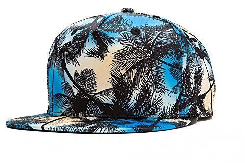 (TESOON Unisex Hip Hop Dancer Hat Snapback Bboy Baseball Cap Hat)