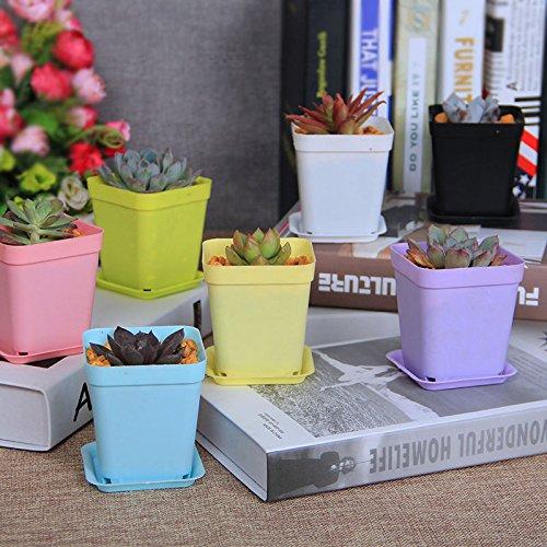 (Garden Tools 7pcs Mini Flower Pots Square Plastic Planting Pots Planter Nursery)