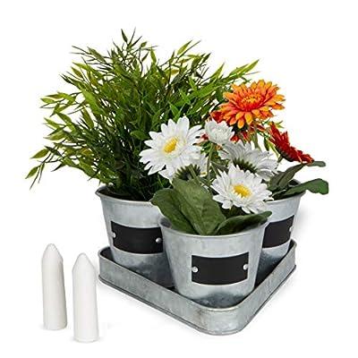 Large Galvanized Chalkboard Basket Bucket Planters Indoor Outdoor Set of 3 Flower Herb Pot Succulent Plant Tray: Garden & Outdoor