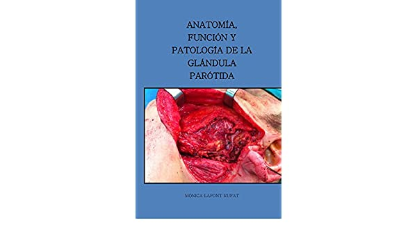 Anatomia, funcion y patologia de la glandula parotida eBook: Monica ...