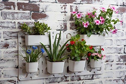 Vertibloom living wall garden starter kit modular indoor - Indoor living wall planter ...