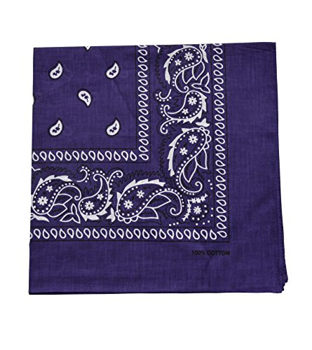 Raylarnia Novelty Bandanas Paisley Cotton Bandanas-Purple