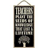 "(SJT94214) Teachers plant the seeds of knowledge that last a lifetime 5"" x 10"" wood sign plaque"