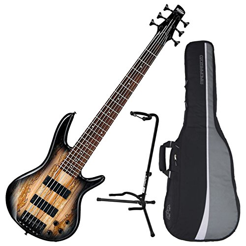 - Ibanez GSR206SM 6-String Electric Bass (Natural Grey Burst) w/ Spalted Maple Top w/ Gig Bag and Stand
