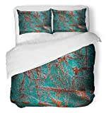 Emvency 3 Piece Duvet Cover Set Breathable Brushed Microfiber Fabric Brown Aged Abstract Grunge Rusty Metal Red Alloy Antique Construction Copper Bedding with 2 Pillow Covers Full/Queen Size