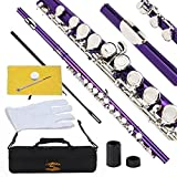 Glory Closed Hole C Flute With Case, Tuning Rod and Cloth,Joint Grease and Gloves Purple-More Colors available,Click to see more colors