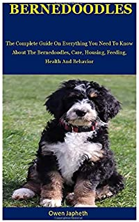 Bernedoodles A Head To Tail Guide Sherry Rupke Sandy