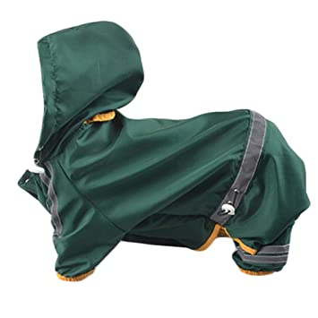Amazon.com: UR Max Beauty - Chaqueta impermeable para perro ...