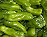 Pepper, Cubanelle Sweet Pepper Seeds, Organic, NON GMO, 100 seeds per pack, Some prefer the Cubanelle pepper to traditional bell peppers because of their sweet and mild flavor.