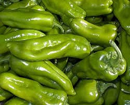 Pepper Cubanelle - Pepper, Cubanelle Sweet Pepper Seeds, Organic, NON GMO, 100 seeds per pack, Some prefer the Cubanelle pepper to traditional bell peppers because of their sweet and mild flavor.