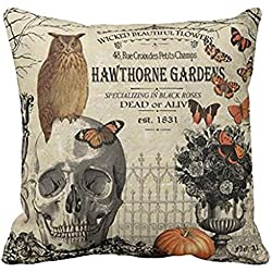HLPPC Modern Vintage Halloween Owl and Skull Throw Pillow Cover 18 x 18 Inches