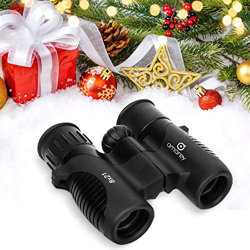 Cheap Kids Binoculars – 8 x 21 Kids Binoculars for Bird Watching, Hiking, Hunting or Other Outdoor Activities, Shock Proof, Easy to Focus, Sharp Image, Perfect Binoculars for Children, Accessories Included