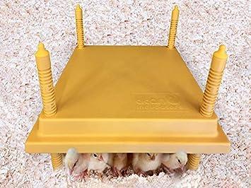 Titan Incubators Criadora de Pollitos 30 x 30 cm