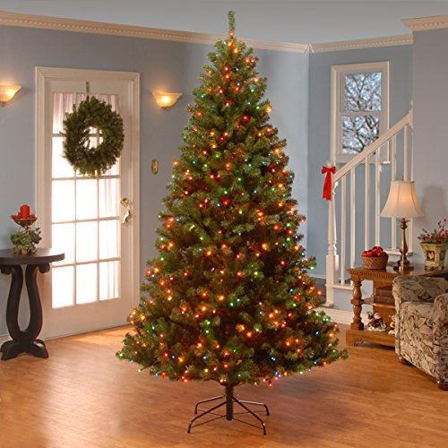 National Tree 7.5 Foot North Valley Spruce Tree with 550 Dual Color LED Lights and On/Off Switch, Hinged (NRV7-300LD-75S) by National Tree Company (Image #2)