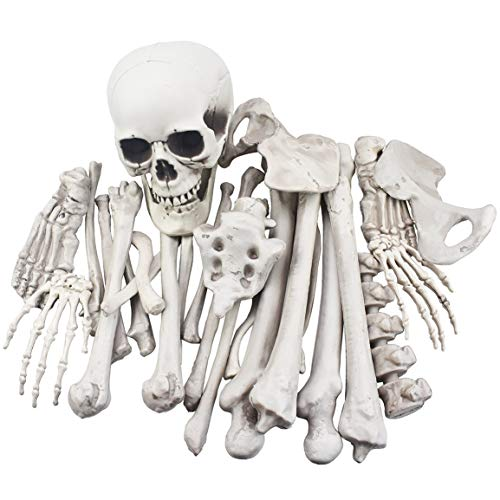 28 Pieces Skeleton Bones and Skull for Halloween Decor or Spooky Graveyard Ground Decoration -