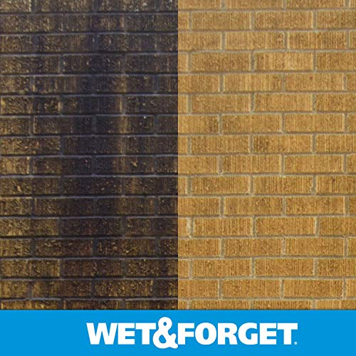 Wet and Forget Moss, Mold, Mildew & Algae Stain Remover, 1 Gallon Concentrate Make 6 Gallons - 2 Pack by WET & FORGET (Image #3)
