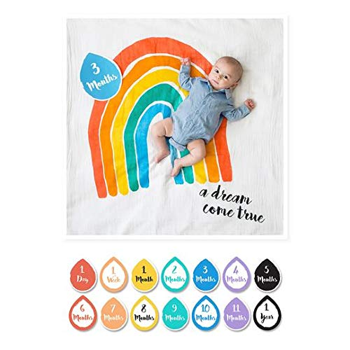 Lulujo Baby's First Year Milestone Blanket & Card Set- A Drea Come True