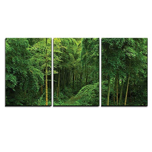 - wall26 - 3 Piece Canvas Wall Art - Hidden Path in a Bamboo Forest - Modern Home Decor Stretched and Framed Ready to Hang - 16
