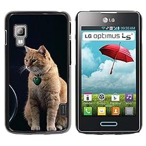 PC/Aluminum Funda Carcasa protectora para LG Optimus L5 II Dual E455 E460 Orange American Shorthair Cat Curl / JUSTGO PHONE PROTECTOR