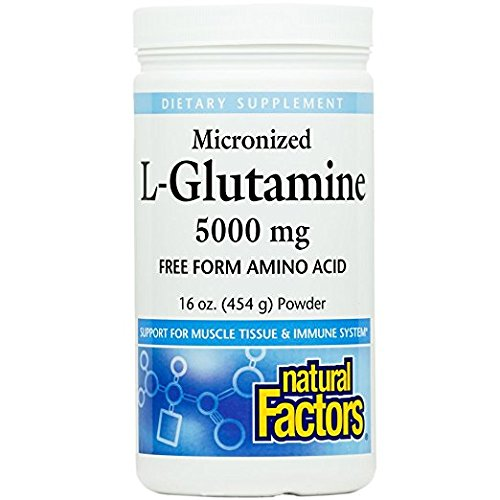 Natural Factors - Micronized L-Glutamine 5000mg, Support for Muscle Tissue & Immune System, 90 Servings (16 oz) (Powder Micronized Glutamine)