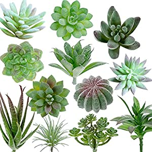 TIMEYARD 12 Pack Artificial Succulents, Faux Succulent Plants Fake Succulents Unpotted in Different Kinds, Echeveria Agave Arrangement Realistic Home décor 115