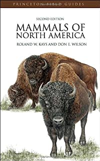 Mammalogy techniques manual 2nd edition james ryan 9781257831944 mammals of north america second edition princeton field guides fandeluxe Choice Image