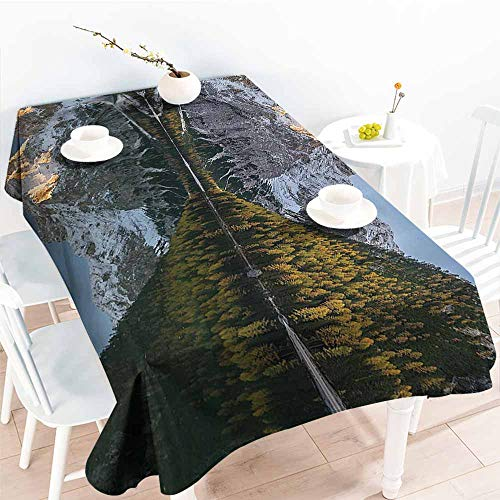 Party Table Cloth,Apartment Decor Collection,Projecting Mountain Image in The Lake with Ice Tops South Italian Fantasy Place Photo,Grey Green 60