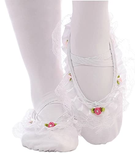 5d7c615b068e3 Amazon.com | Panda Superstore Performance Ballet Shoes/Dance Shoes ...