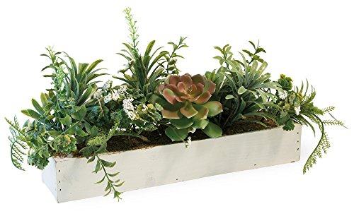 Celebrate the Home Decorative Foliage Table Centerpiece, Succulents