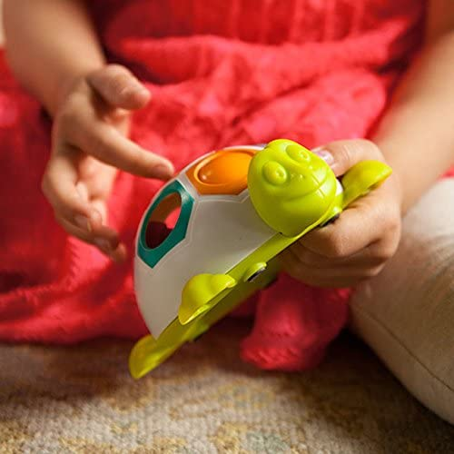Amazon.com: Fat Brain Toys Pop & Slide Shelly: Toys & Games