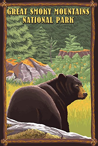 Great Smoky Mountain National Park, Tennesseee - Black Bear in Forest (12x18 Art Print, Wall Decor Travel Poster)
