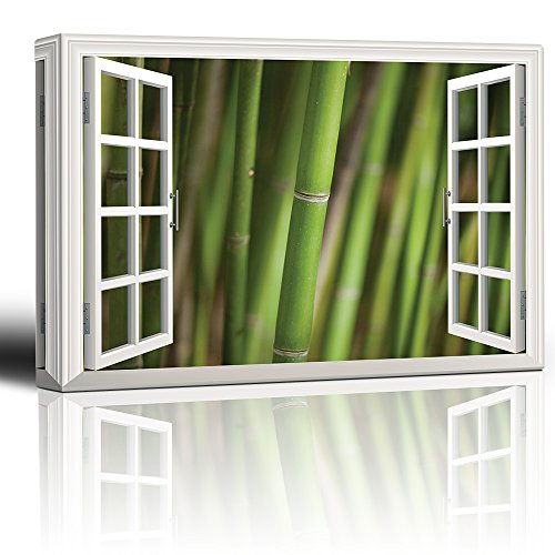 White Window Looking Out Into a Bamboo Forest III