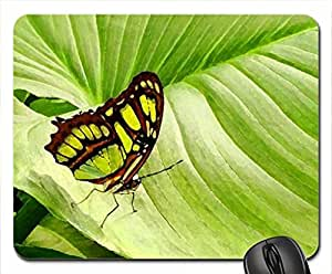 The leaf Mouse Pad, Mousepad (Butterflies Mouse Pad, Watercolor style) by mcsharks