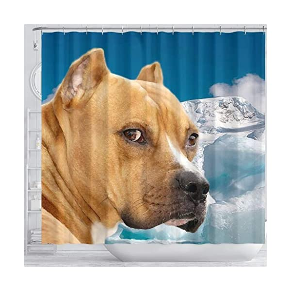 Pawzglore American Staffordshire Terrier Print Shower Curtains 3