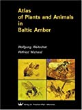 img - for Atlas of Plants and Animals in Baltic Amber book / textbook / text book