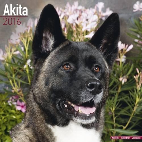 Akita Calendar - Breed Specific Akitas Calendar - 2016 Wall Calendars - Dog Calendars - Monthly Wall Calendar By Avonside