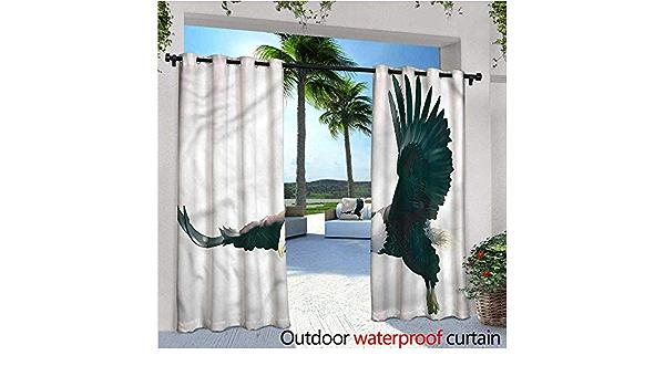Cortinas de Patio con diseño de águila cálida con símbolo ...