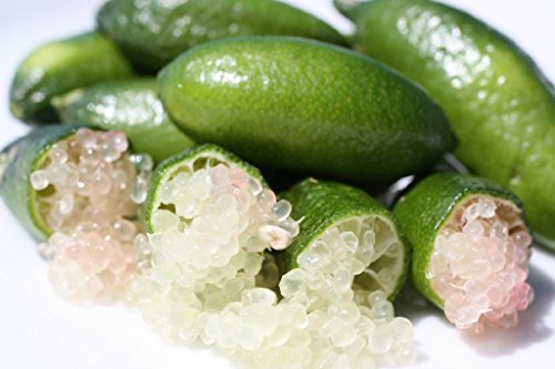 (SHANLEY FARMS Finger Limes Bag, 1 Each )