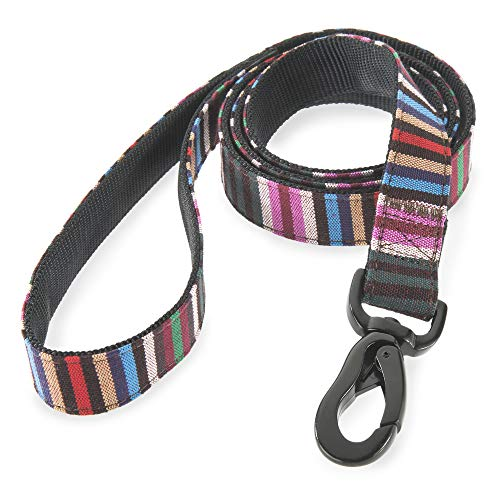 Embark Urban Dog Leashes Colorful