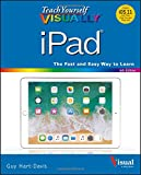 img - for Teach Yourself VISUALLY iPad (Teach Yourself VISUALLY (Tech)) book / textbook / text book