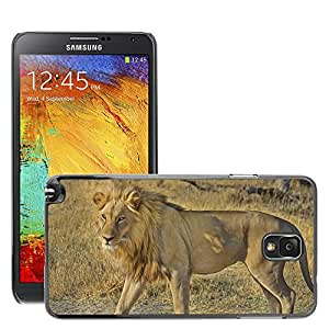 Etui Housse Coque de Protection Cover Rigide pour // M00116071 León Wildcat Safari África // Samsung Galaxy Note 3 III N9000 N9002 N9005