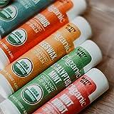 Cliganic USDA Organic Lip Balm Set - 6 Flavors