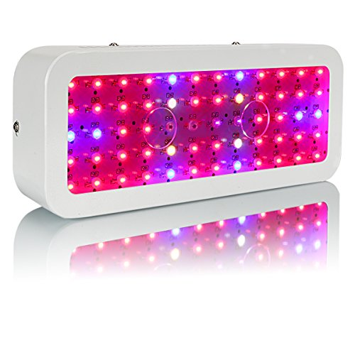 (Gianor 600W Led Grow Light Full Spectrum Double Chips Led Light Grow with UV/IR for Greenhouse Plant Veg and Flower)